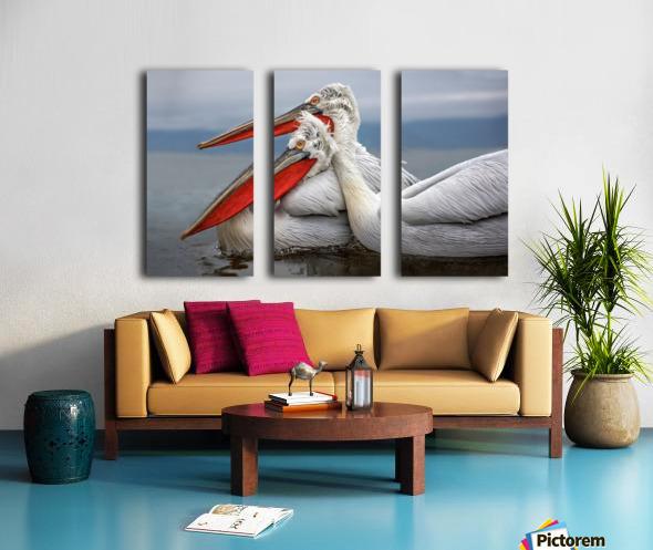 Dalmatian Pelicans Split Canvas print