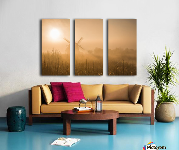 Golden Dawn. Split Canvas print