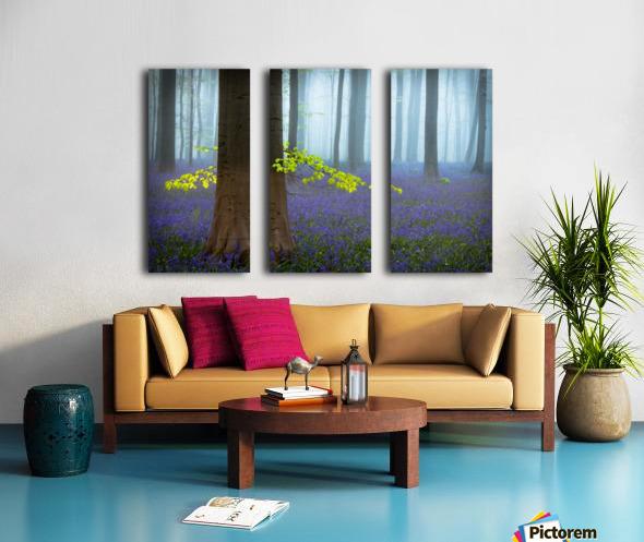Spring........... Split Canvas print