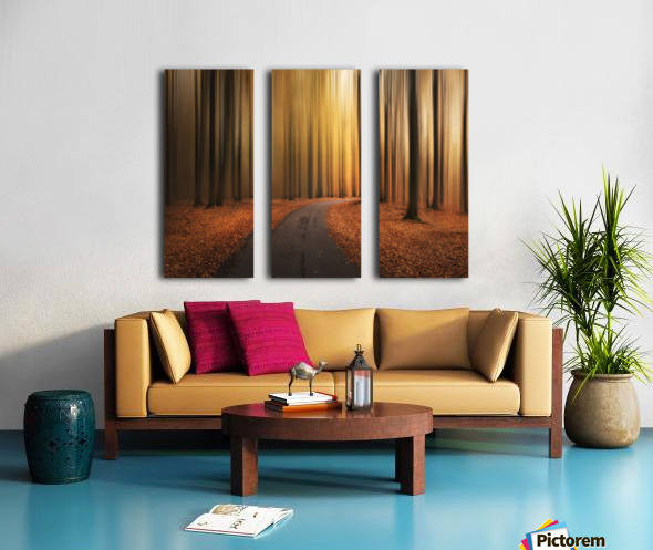 Path to unknown Split Canvas print