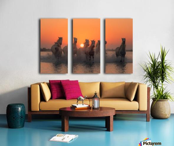 Sunset in Camargue Split Canvas print
