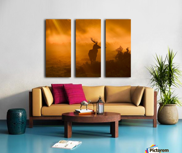 Guard Of Light Split Canvas print