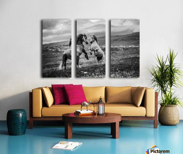 Wild and free Split Canvas print