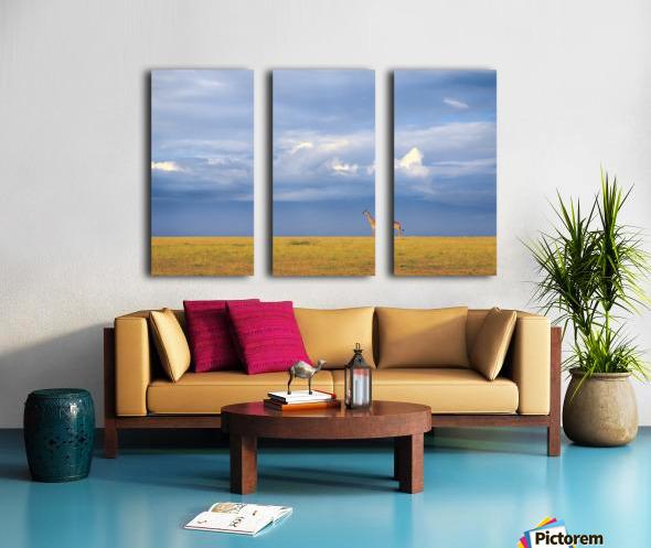 Colors of freedom Split Canvas print