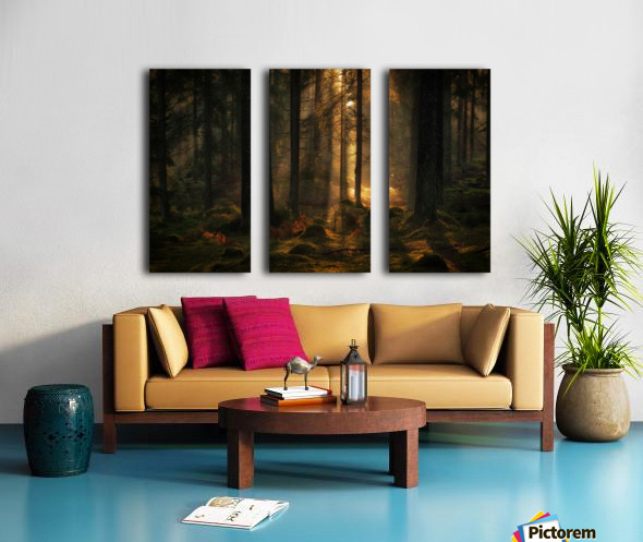 The light in the forest Split Canvas print