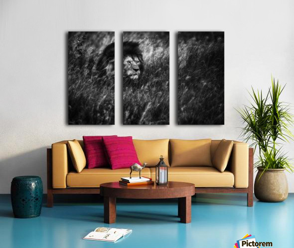 Immortal Split Canvas print