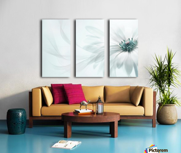 Purity Split Canvas print