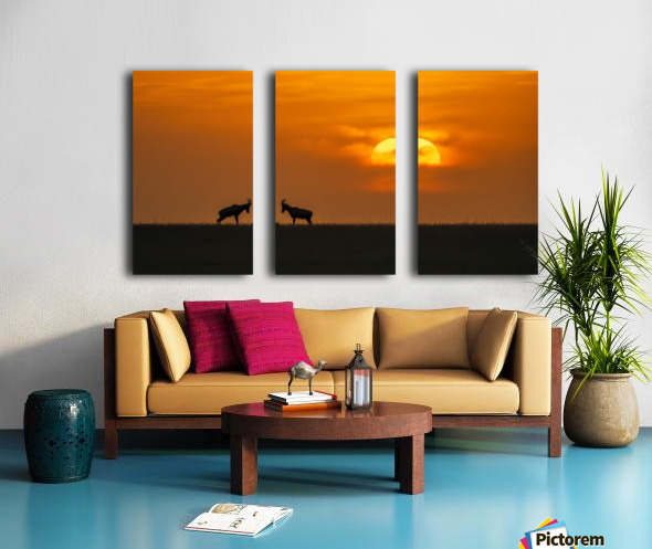 At The Sunset Split Canvas print