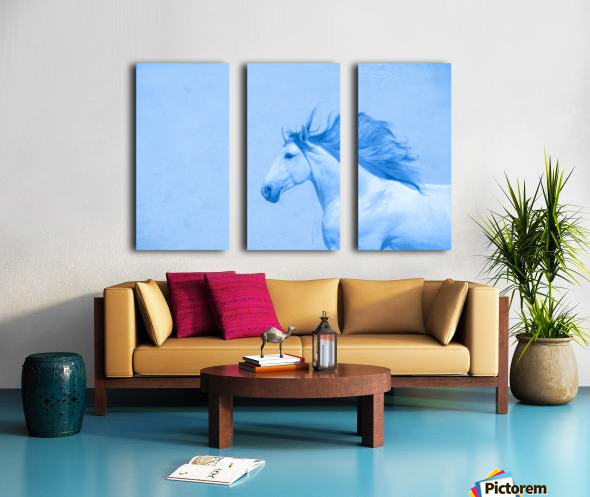 Blue Andalusian Horse 2 Split Canvas print