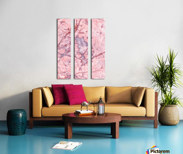 Pink Marble Split Canvas print