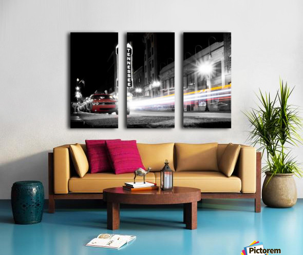 Tennessee Theater Monochrome Split Canvas print