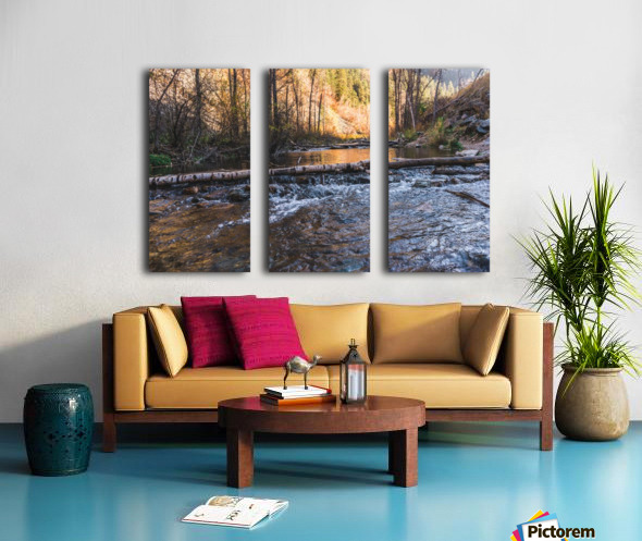 Log Block Creek Split Canvas print