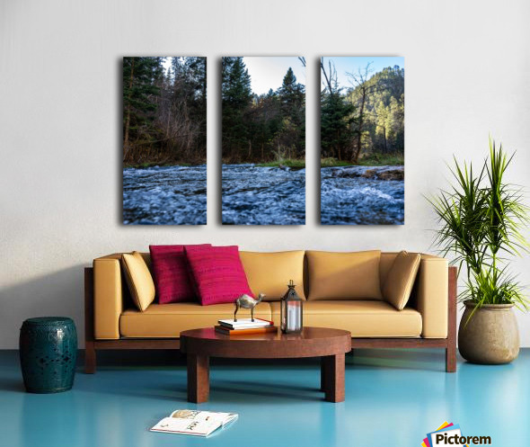Creek Split Canvas print