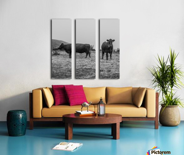 Cows in the mist Split Canvas print