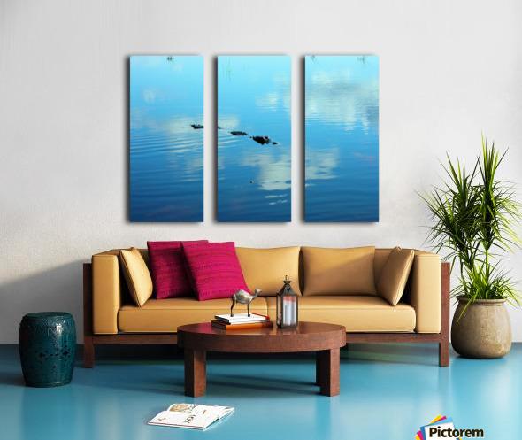 Everglades1 Split Canvas print