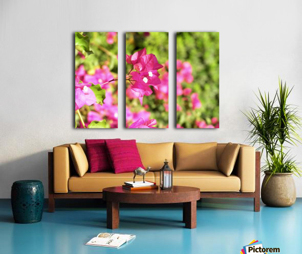 Flower39 Split Canvas print