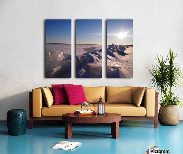 Frozen Split Canvas print