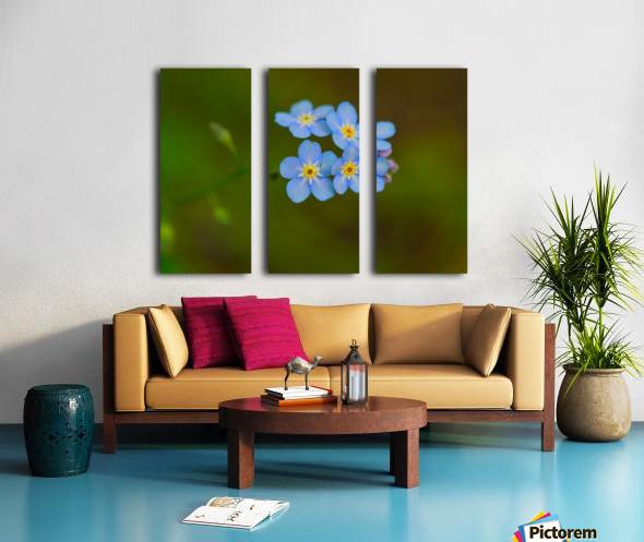 Field of Wild Flowers/' Rolled Canvas Art 18 x 24