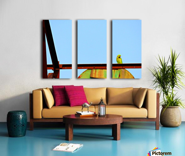 Balancing Split Canvas print