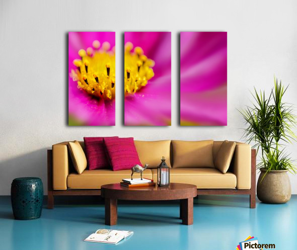 Pink Surprise Split Canvas print