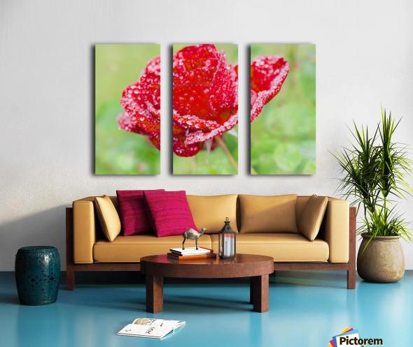 Raindrops and Roses Split Canvas print