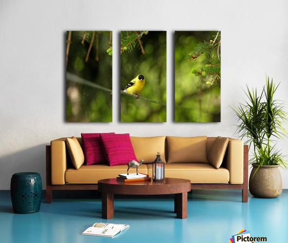 Goldfinch On The Disappearing Line Split Canvas print