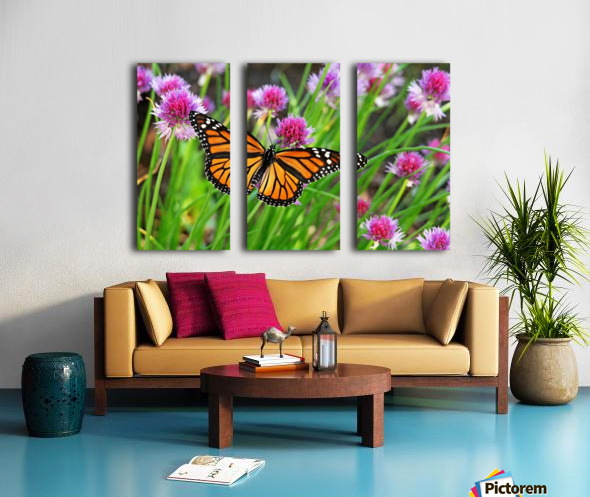 Monarch And Chives Split Canvas print