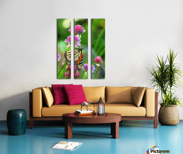 Monarch Butterfly On Chive Blooms Split Canvas print