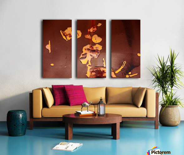 Watching Paint Peel Split Canvas print