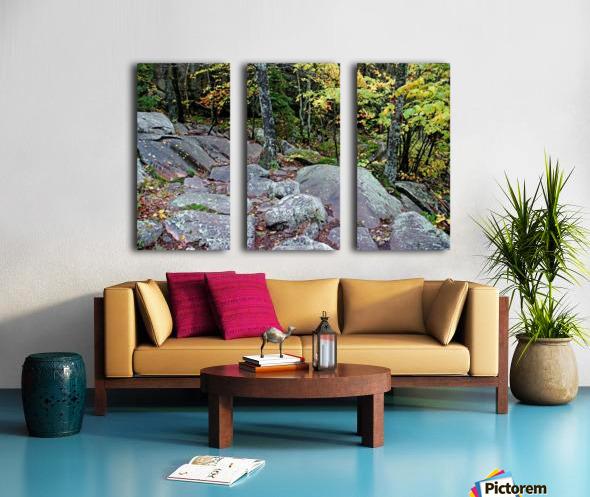 Chikanishing Trail Split Canvas print