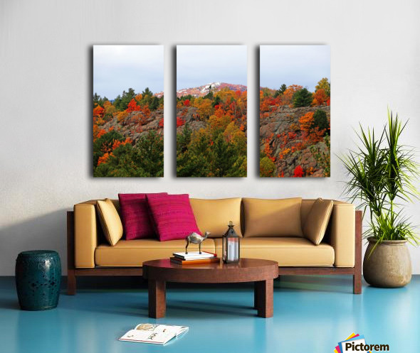 Silver Peak Split Canvas print