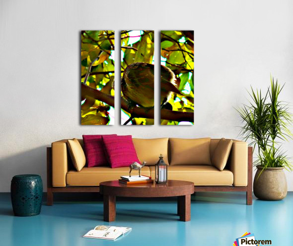 Bird 2 Split Canvas print