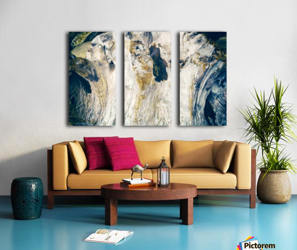 Life of Wood Split Canvas print