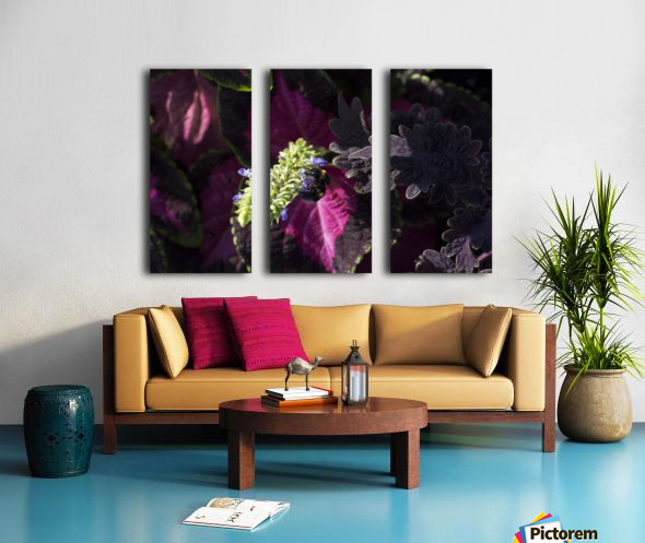 Bumblebee Split Canvas print