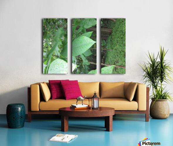IMG_4893 Split Canvas print