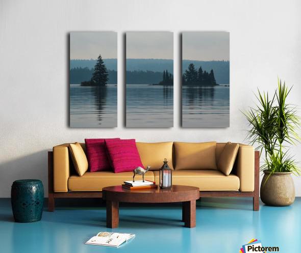 Cedar Lake Split Canvas print