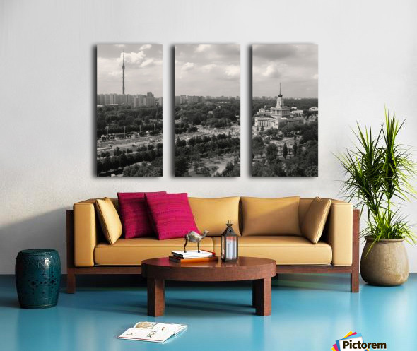Moscow Air View I Split Canvas print