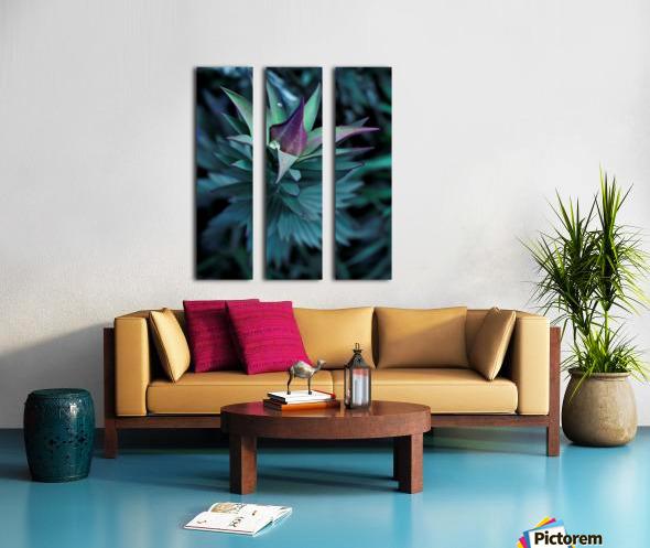Funky flora Split Canvas print