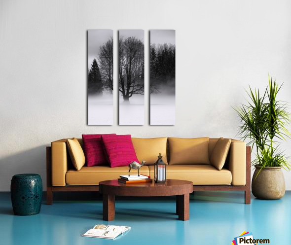 Winter fog Split Canvas print