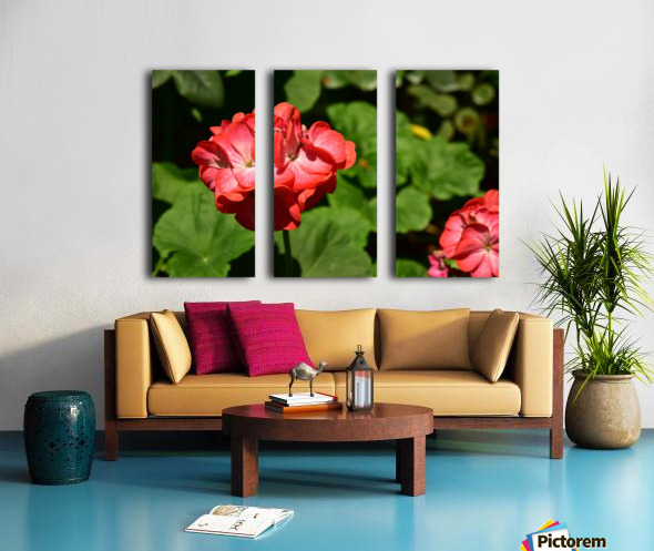 Plants - Flowers - 010 Split Canvas print