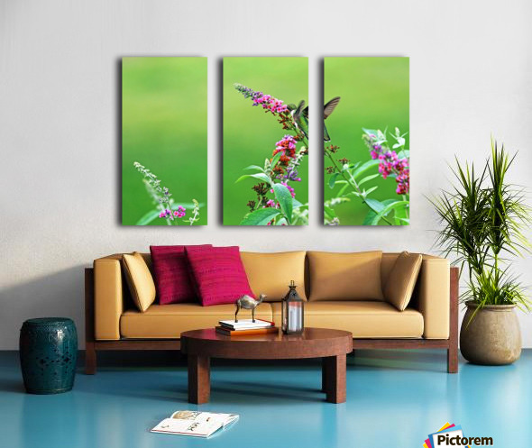 Jewel In The Garden Split Canvas print