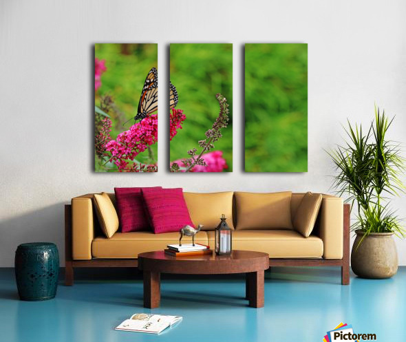 Monarch In The Garden Split Canvas print