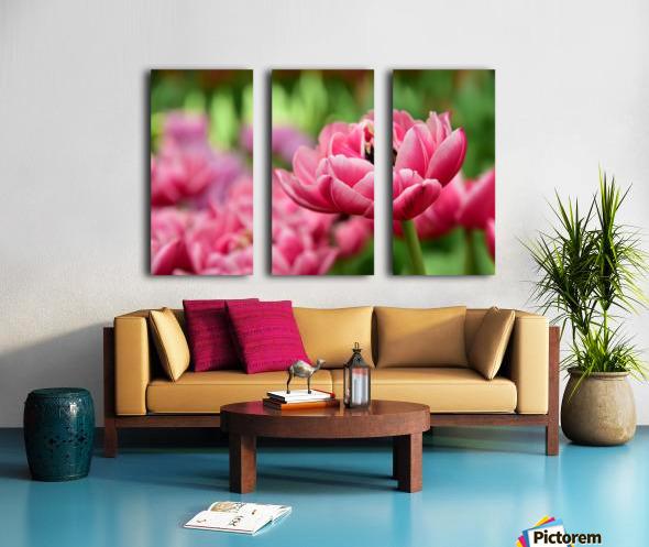 Plants - Flowers - 013 Split Canvas print