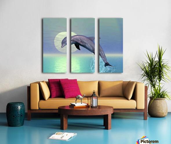 Dolphin Split Canvas print