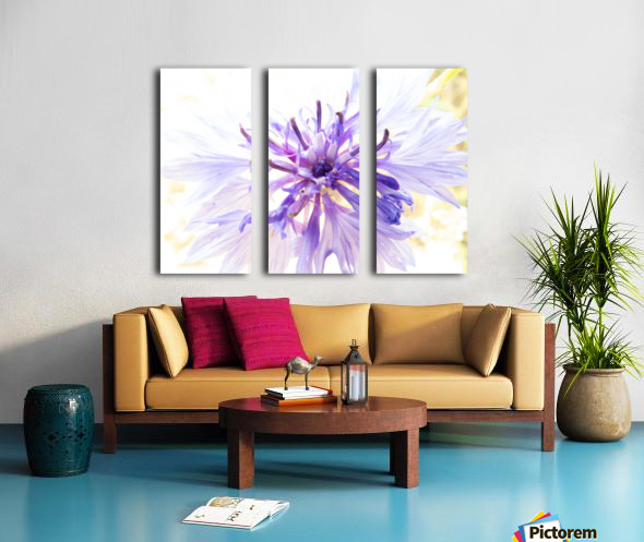Purple Flower Burst Split Canvas print