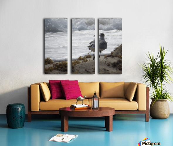 Seagull running Split Canvas print