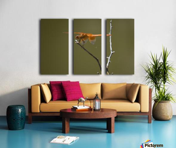 Orange Dragonfly Split Canvas print