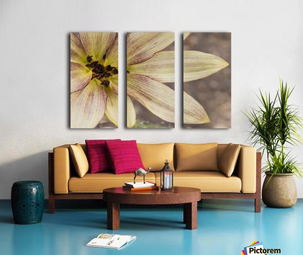 Yellow petals Split Canvas print