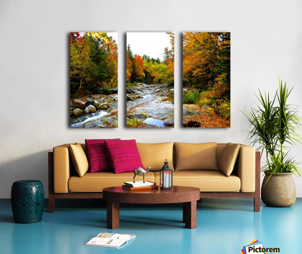 10.9.18 Fall Split Canvas print