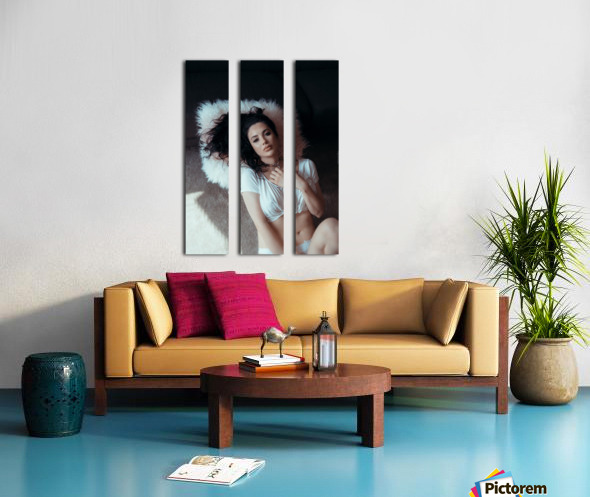 Pillow Princess Split Canvas print